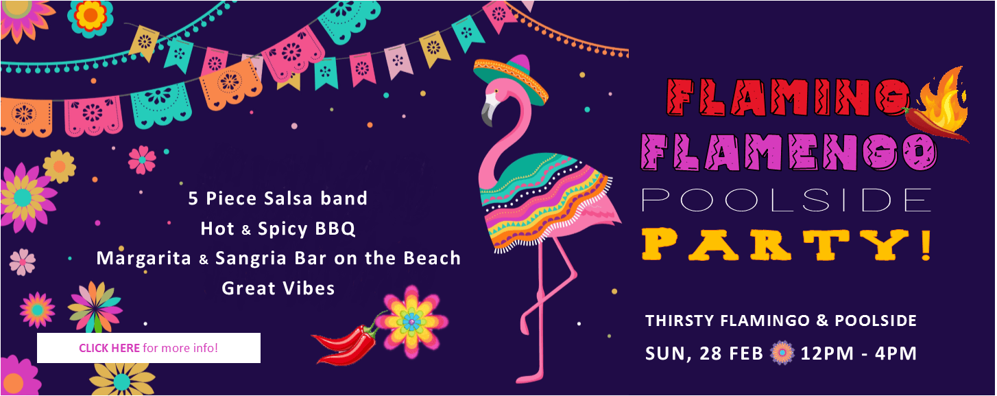 flaming-flamingo-party