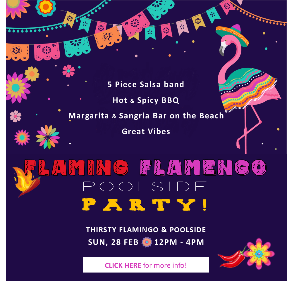 flaming-flamingo-party_mobile